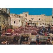 C.Postale : Maroc - Fes - Les Teinturiers