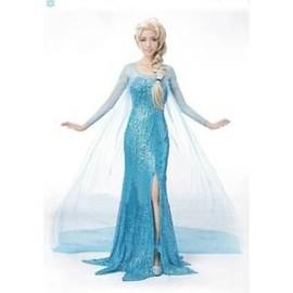 Adulte Robe Elsa La Reine Des Neiges