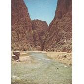 C.Postale : Maroc - Tinghir - Les Gorges Du Todra