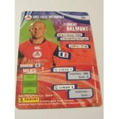 Carte Foot - Panini - Harry's - N� 39 - Losc Lille Metropole - Florent Balmont