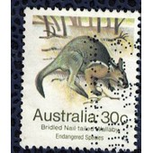 Australie 1981 Oblit�r� Used Bridled Nail-Tailed Wallaby Brid� � Queue Corn�e