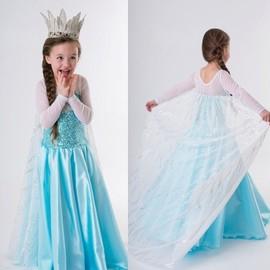Robe D�guisement Costume La Pure Du Neiges Frozen Elsa Anna Enfant Fille Neuf