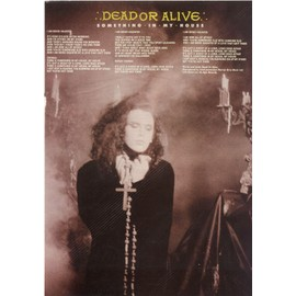"""Dead Or Alive/Pete Burns [Poster Couleurs Songword """"Something In My House""""]"""