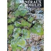 La D�couverte Du Fossile Hyaenaelurus (M. L. Ginsburg) / Tucson 77 : Mythes & R�alit�s / Un Paradis De La Min�ralogie : L'�le D'elbe / Les Oeufs De Dinosaures : Min�raux & Fossiles N� 28 (Avril 1977) de a. carion / a. martinez / c. germain / etc ...
