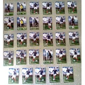 29 Magnets Relief Foot Panini 2010 France