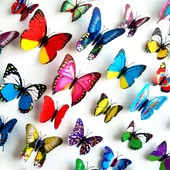 Amovible Accueil D�cor Art Stickers Fen�tre Affiche 12pcs 3d Butteryfly Pvc Diy Vinyl Mural Stickers Muraux Rouge