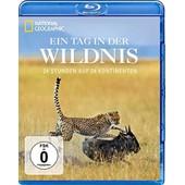 Ein Tag In Der Wildnis - 24 Stunden Auf 4 Kontinenten de National Geographic