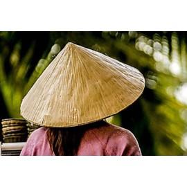 Chapeau Vietnamien En Fibres V�g�tales S�ch�es
