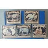Allemagne Serie De 5 Billets De 50 Pfennig ( Zoologischer Garten )