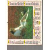 Almanach / Calendrier Des Ptt Du Gard 1986 / Romantisme Feminin