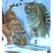 Carte Pop Shots Tigres Blancs