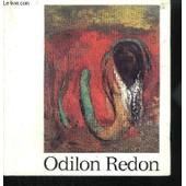Odilon Redon 1840-1916 de COLLECTIF