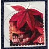 Belgique 2012 Oblit�r� Sur Fragment Used Feuilles D'arbres �rable Palm� Acer Palmatum