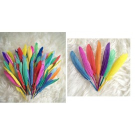 Plumes Color�es - D�coration Activit�s Manuelles Enfant Multicolore - 274