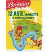 Magnet Asie Lion-Inde