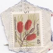 Timbre Australie : Callistemon Teretifolius, 45