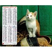 Almanach Des Ptt 1981 - D�partement 15 (Cantal)