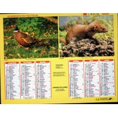 Almanach Du Facteur 1994 - D�partement 15 (Cantal)