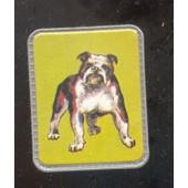 Ecusson , France-Lait Bull-Dog