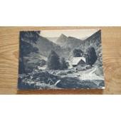Carte Postale Vall�e De Munster - Environs De Metzeral, Vall�e De Wormsa - Ann�es 50 Ou 60