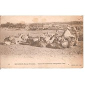 Maroc -Bou-Denib - Carte De 1915 - Convoi De Chameau