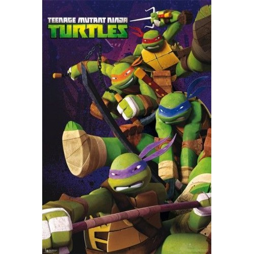 Tmnt les tortues ninja poster turtle power 91x61 cm