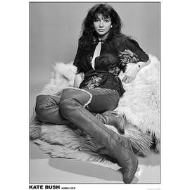 Kate BUSH - Mars 1978 - AFFICHE / POSTER envoi en tube - 59x84 cm