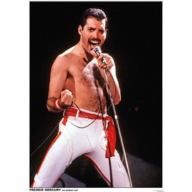 Freddie Mercury - Queen - Los Angeles 1982 - AFFICHE / POSTER envoi en tube - 59x84 cm