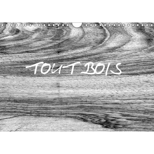 1325176648 - Patrice Thébault: Tout Bois - L'univers Du Travail Du Bois - Calendrier Mural A4 Horizontal - Livre