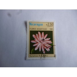 timbre Nicaragua 1981 : nymphea BGBerry.