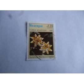 timbre Nicaragua 1981 : nymphea Marliarcea chromat.