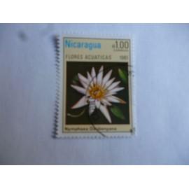 timbre Nicaragua 1981 : nymphea daubennyana