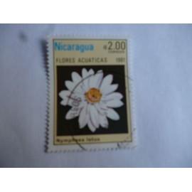 timbre Nicaragua 1981 : nymphea lotus.