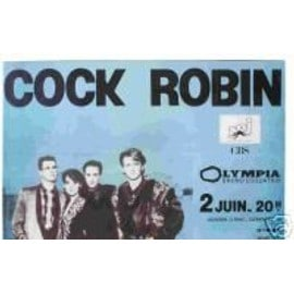 COCK ROBIN - le groupe