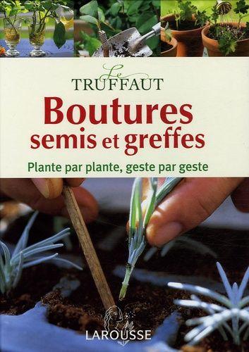 Boutures, semis et greffes - Encyclopédie pratique Le Truffaut