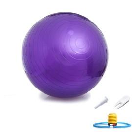 Rouge//Bleu//Pourpre//Rose//Argent Ballon de Gymnastique Ballon de Yoga avec Pompe 45cm//55cm//65cm//75cm//85cm//95cm SENDILI Ballon de Gym