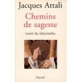 Chemins De Sagesse - Trait� Du Labyrinthe de Jacques Attali