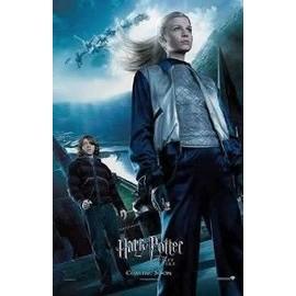 Harry Potter Et La Coupe De Feu - Affiche originale collector 66*96 cm - fleur delacour - Modèle 3