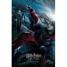 Harry Potter - Double affiches verticales de 120*174cm collector ! Modèle 1 Harry Potter