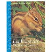 Les Ecureuils, L'ecureuil De Coree de Roger Blineau
