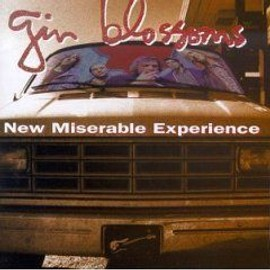 GIN BLOSSOMS : NEW MISERABLE EXPERIENCE