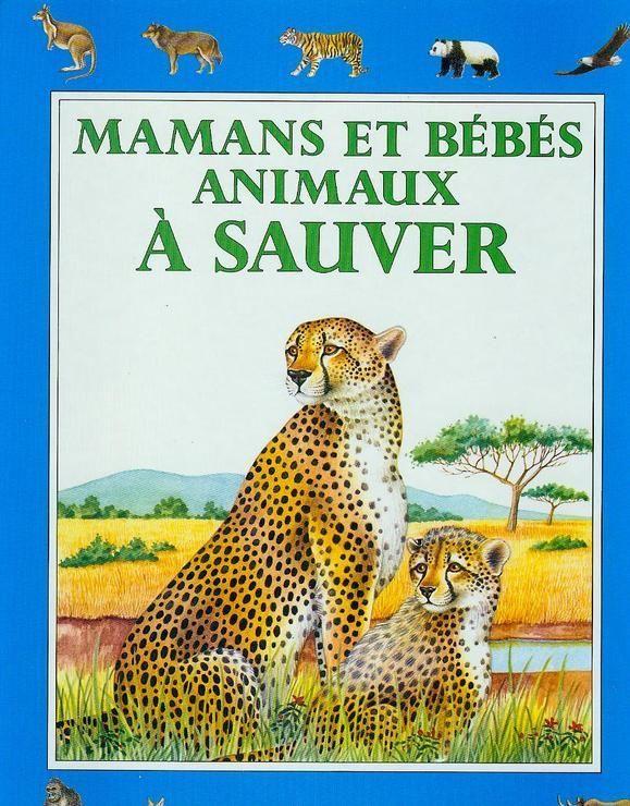 Mamans et bebes animaux a sauver 032197