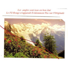 Chambery (73) / Glaciers / Alpes / Mont Blanc / Mer De Glace / Fleurs - Cartes postales