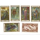 Le Tarot D'ambre Ou Le Jeu De La Marelle - Illustrations Florence Magnin