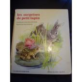 Les Surprises De Petit Lapin de DALMAIS, Anne-Marie