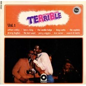 Rhythm And Blues Terrible Vol 1 - King Curtis Capitols Arthur Conley Jimmy Hughes Vanilla Fudge Last Word Ven E King
