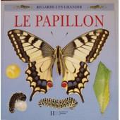 Le Papillon de Labrunie, Anne-Marie