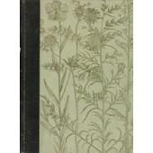 Sant� Et Beaut� Par Les Plantes de Jeanne Audy