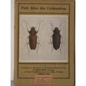 Petit Atlas Des Coleopteres Tome 2 de MAGNIN, J