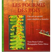 Les Fourmis Des Bois de Bruno Corbara